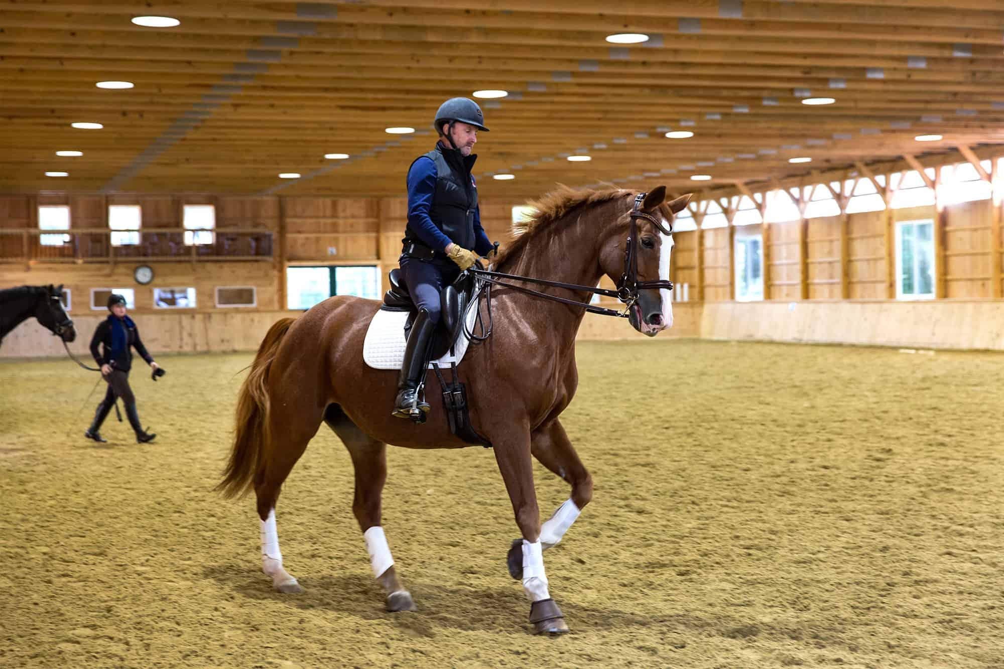 horse rider saddle