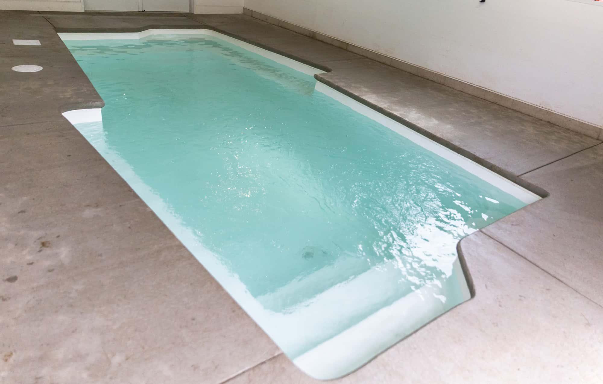 pet spa dog daycare dog pool