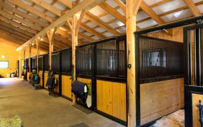 9 Considerations For your Horse Stall Construction Project