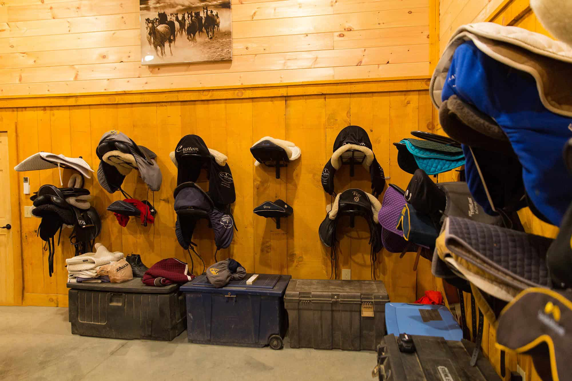 saddle bin tack room
