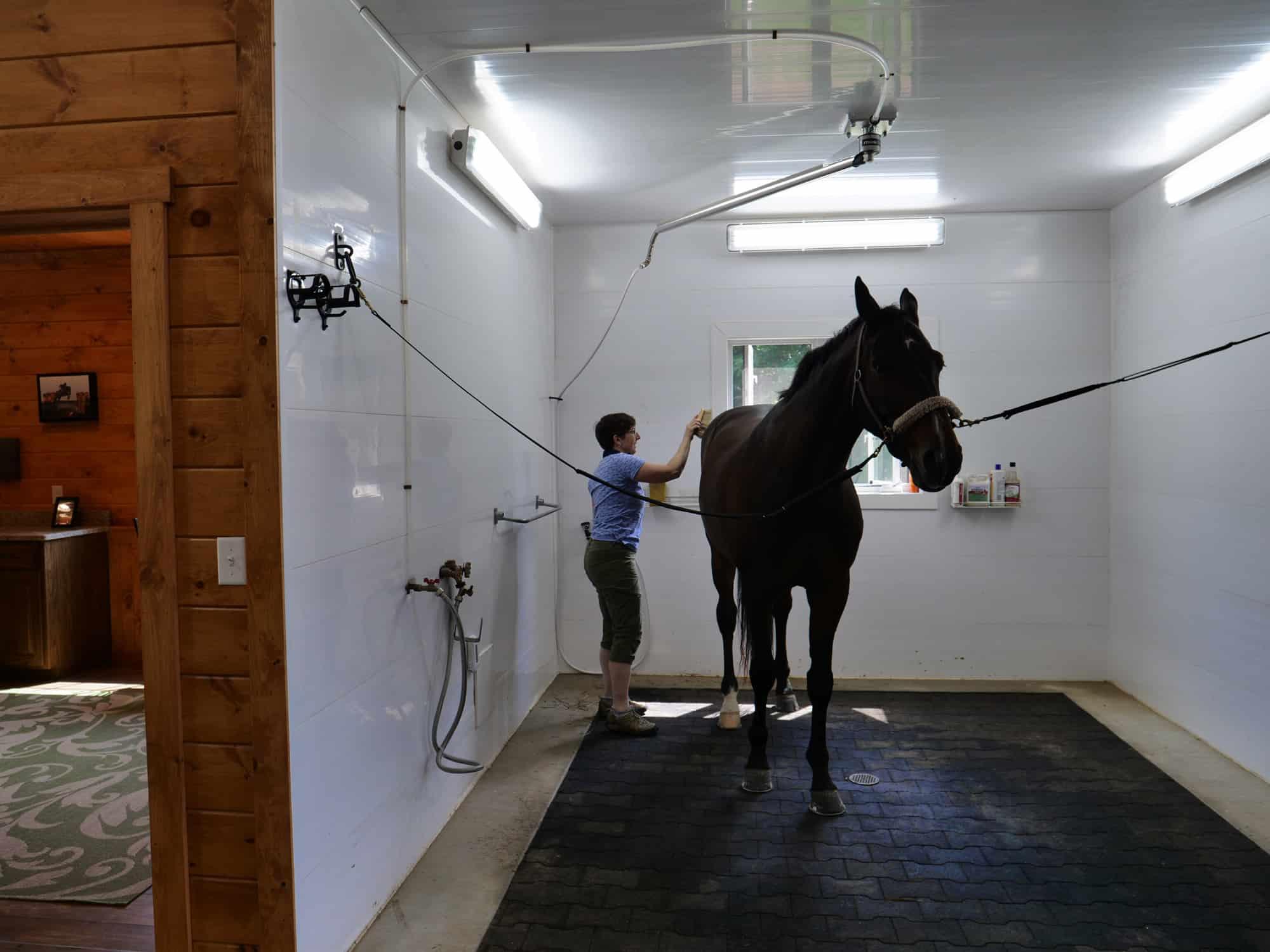 wash room horse stalls
