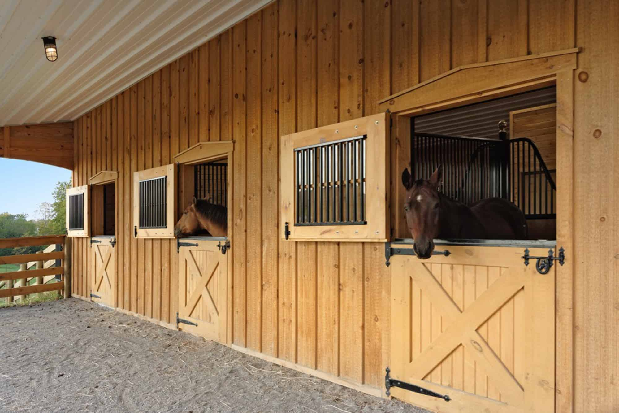 Top horse stall door features for your barn