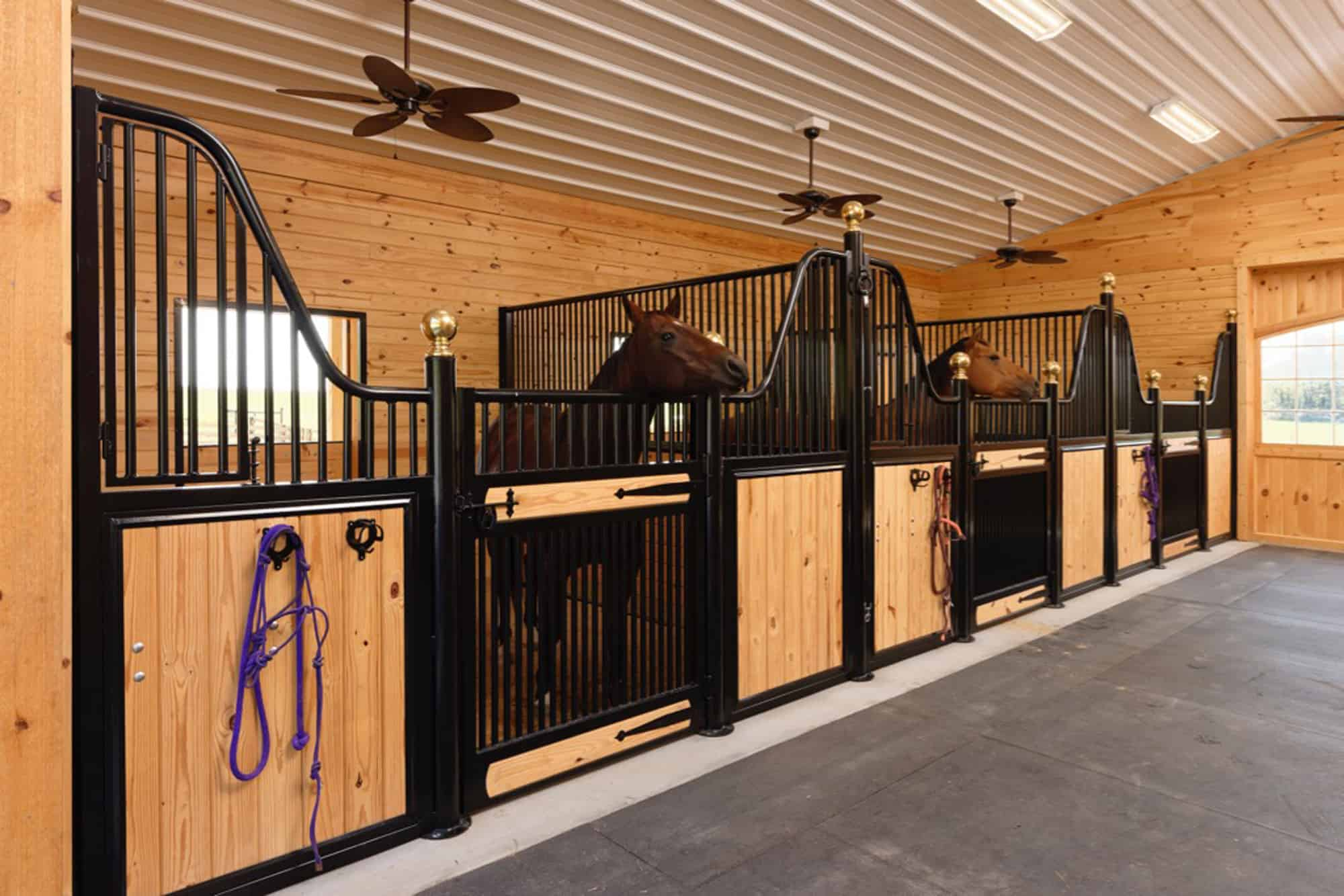 horse stalls tunnel white pine