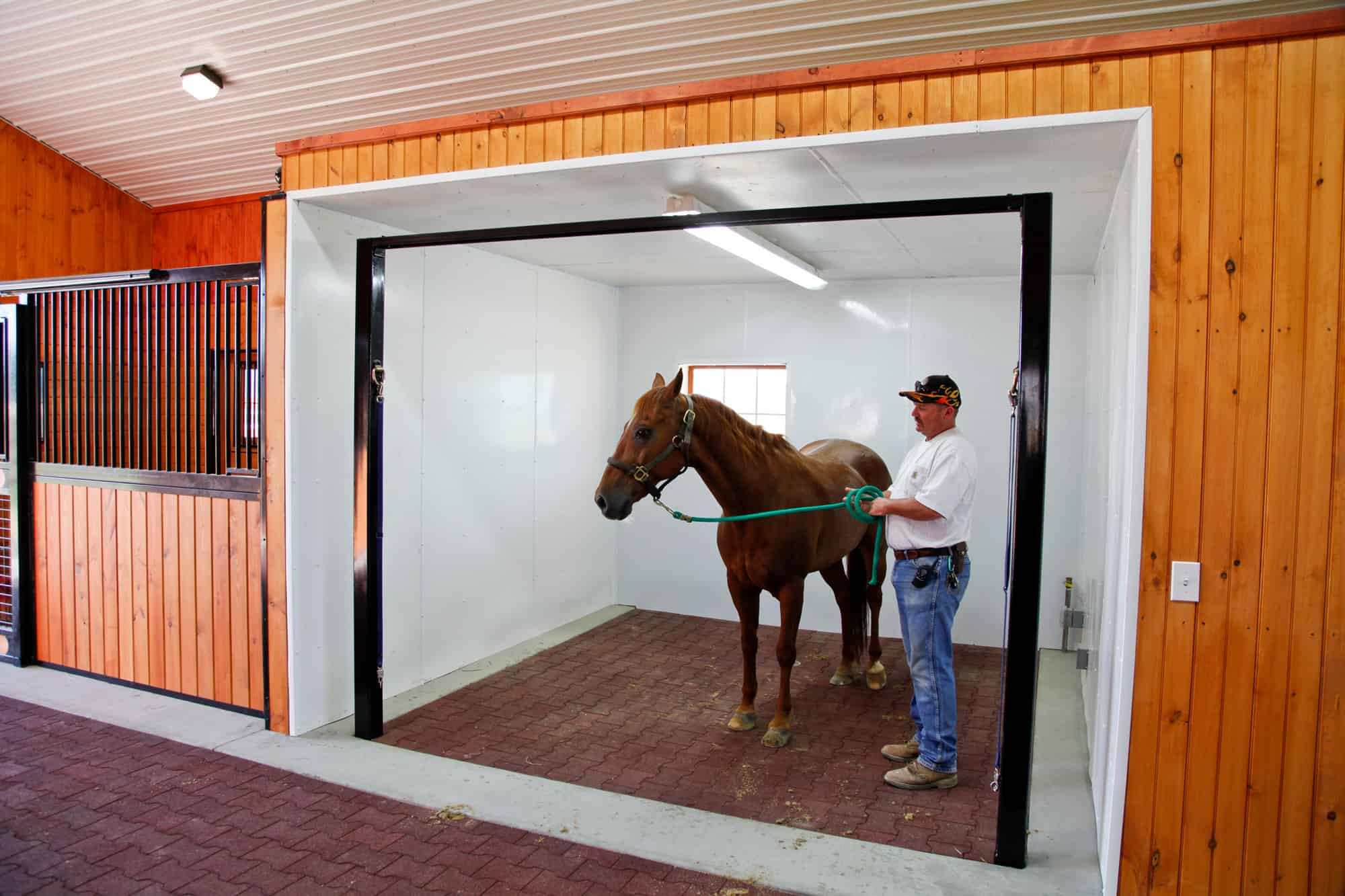 wash stall horse stalls