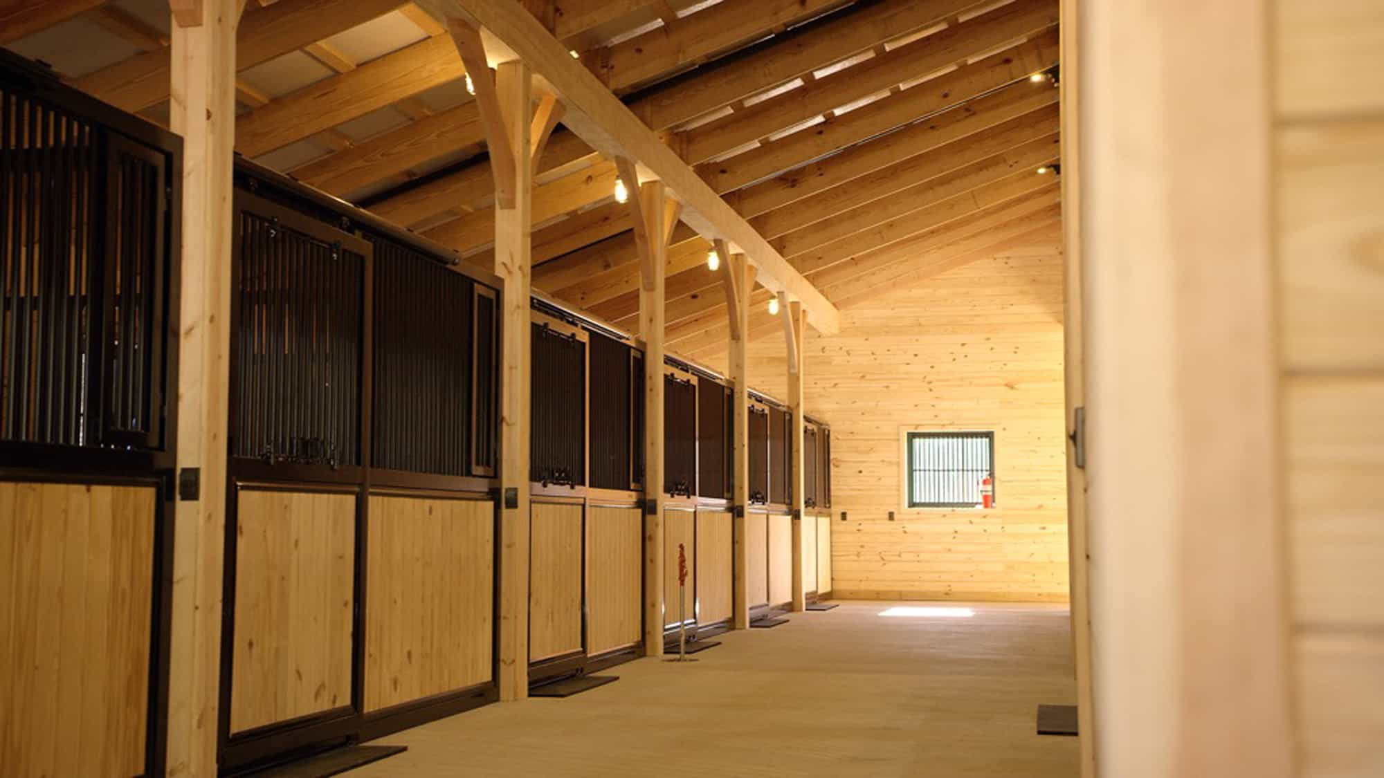 horse stalls tunnel mass timber