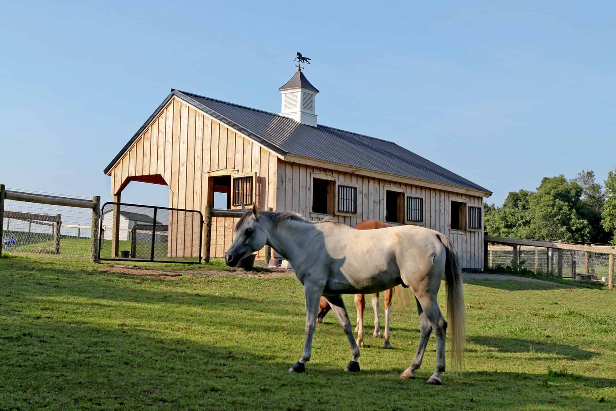 cupola metal roof horse stalls