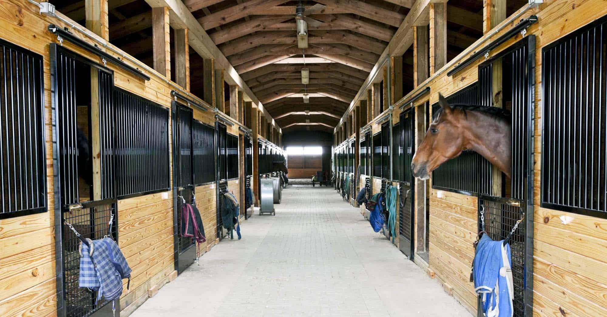 Elaborate horse barn