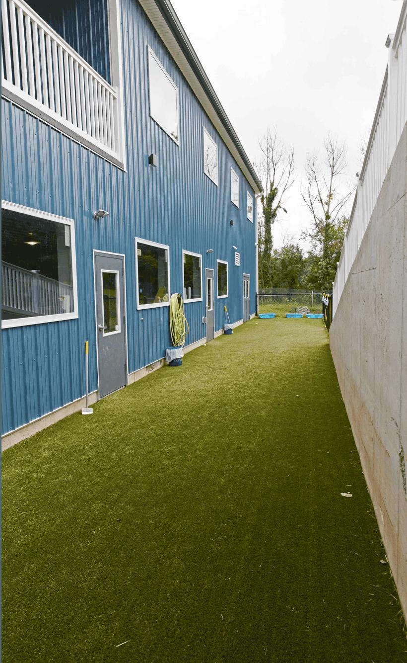 grass strip blue siding balcony