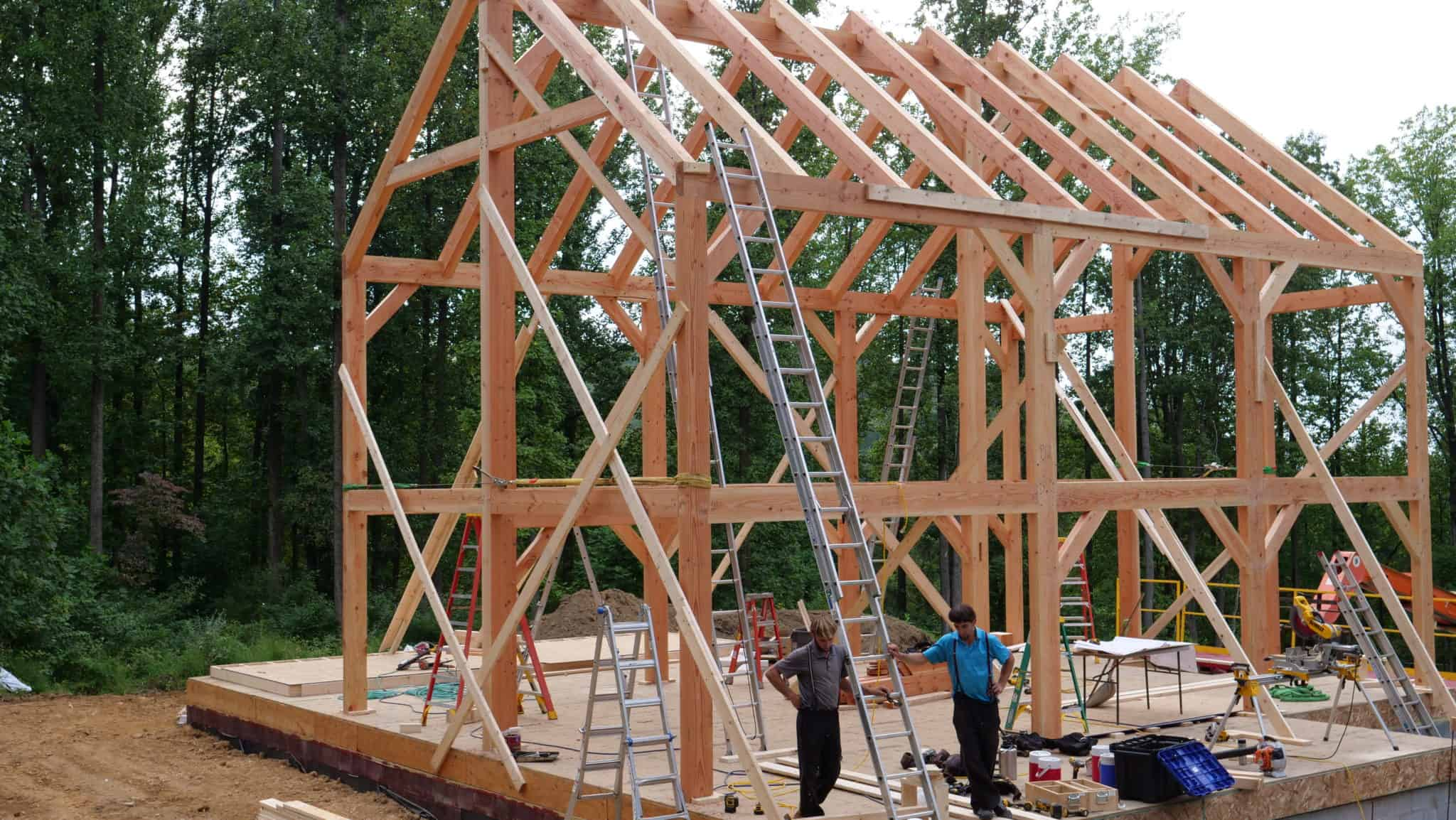 amish mass timber ladder