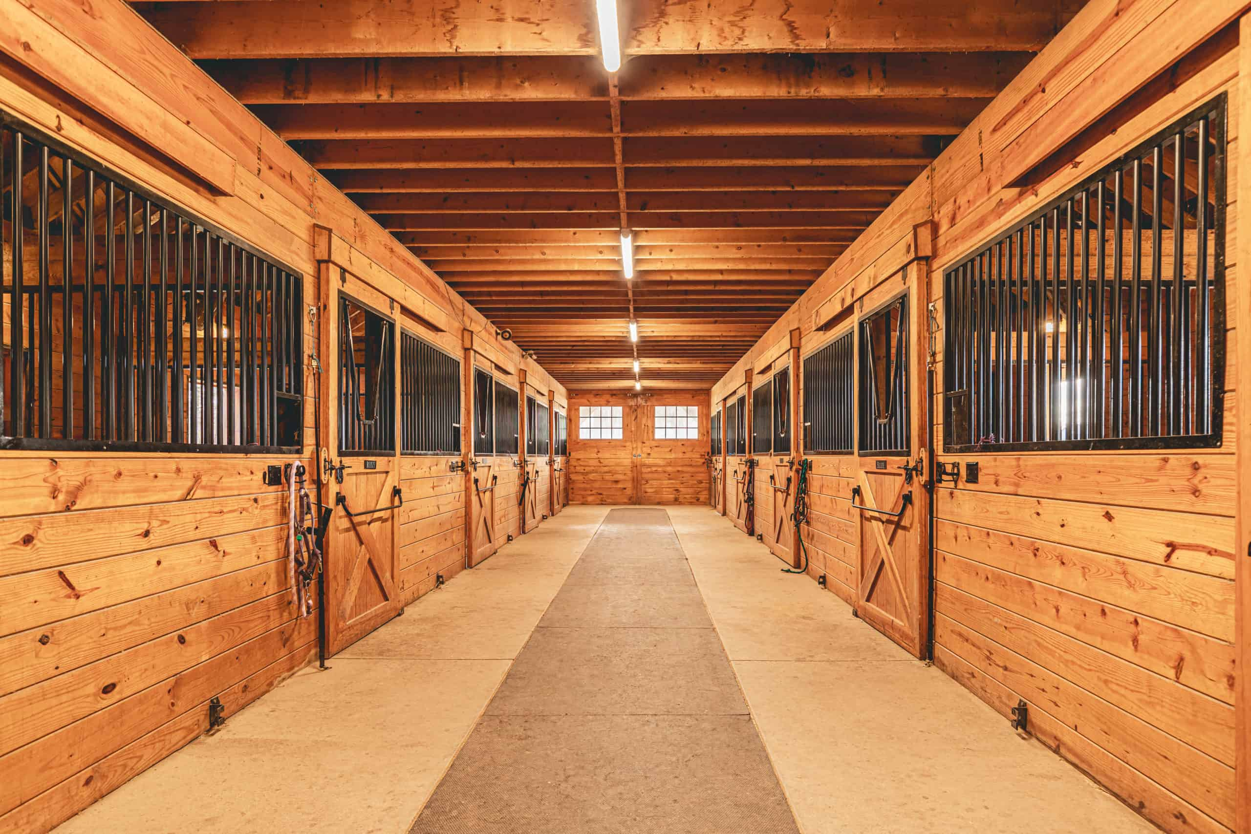 tunnel shot horse stalls