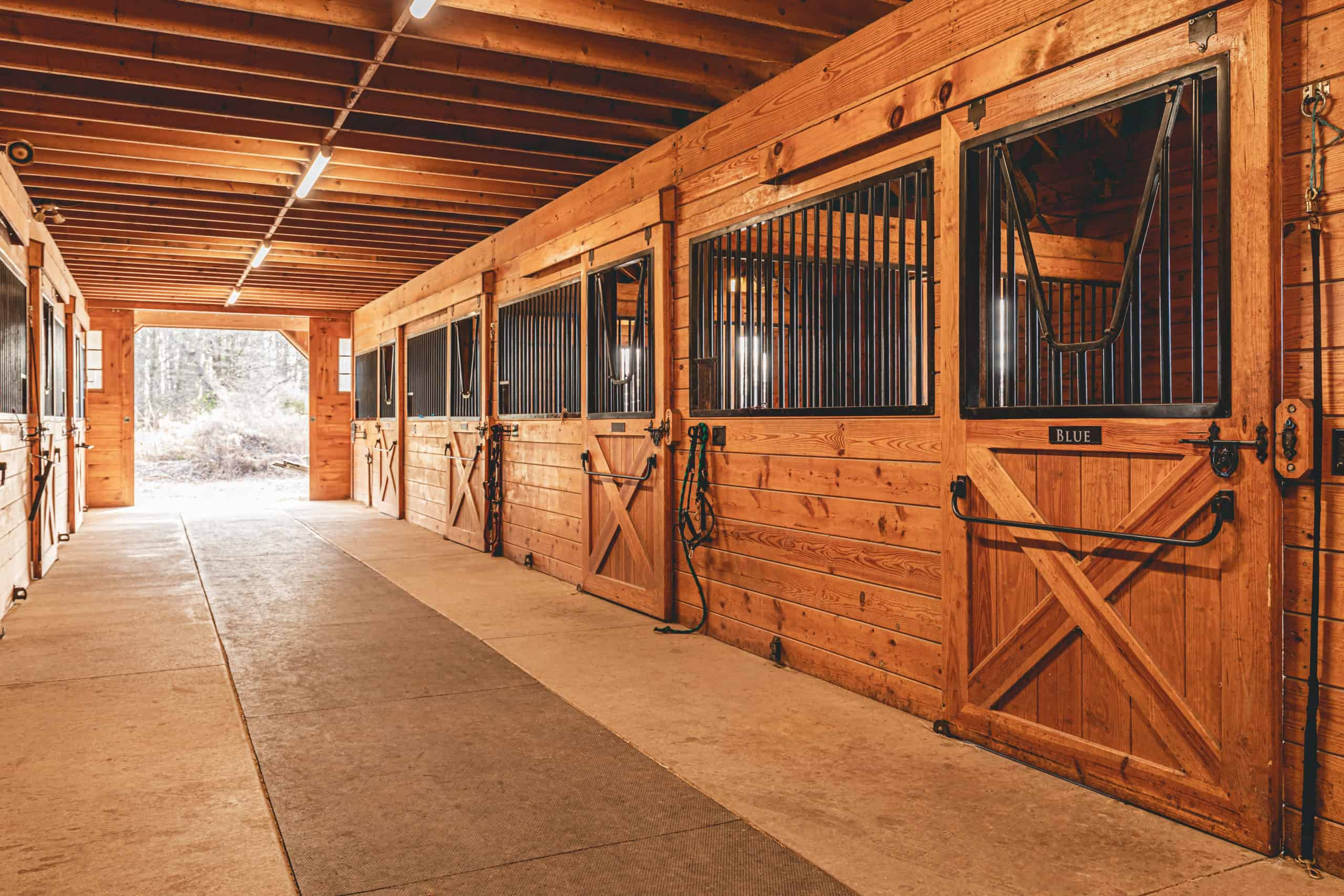 horse stall and tunnel